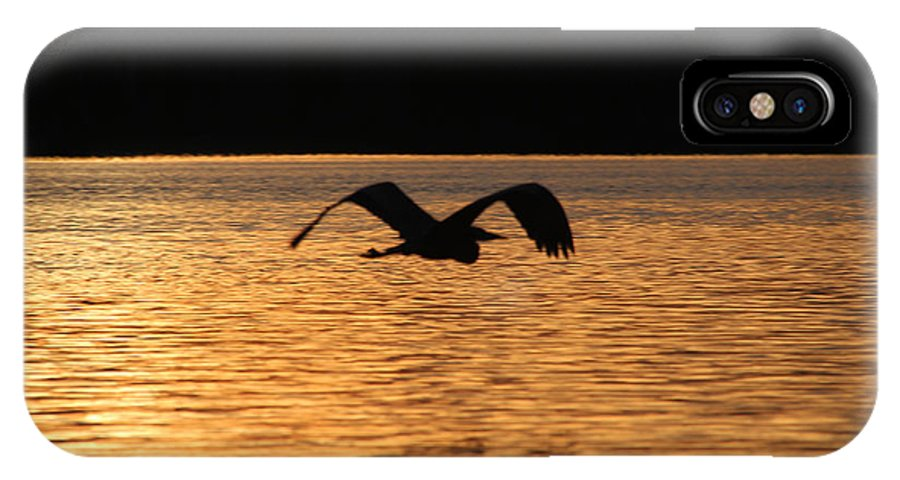 Blue Heron IPhone X Case featuring the photograph Silouette On The Lake by Ericamaxine Price