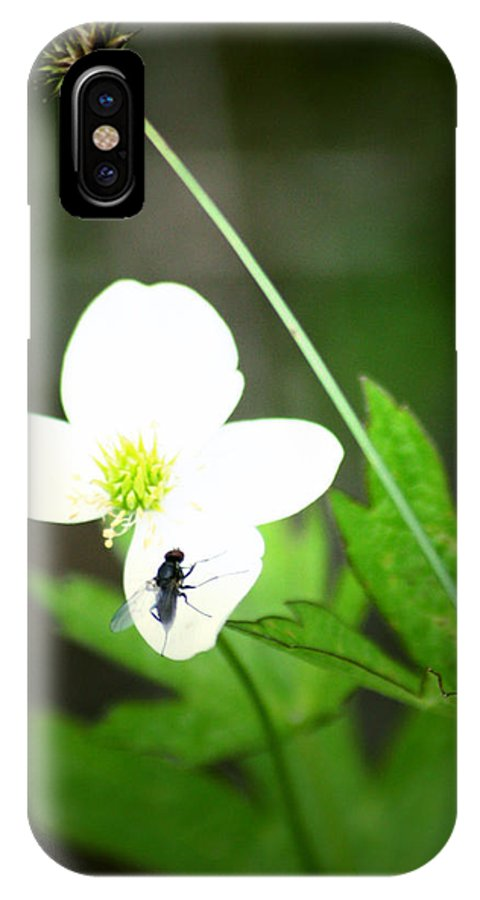 Street Photographer IPhone X Case featuring the photograph Six Oh Clock by The Artist Project