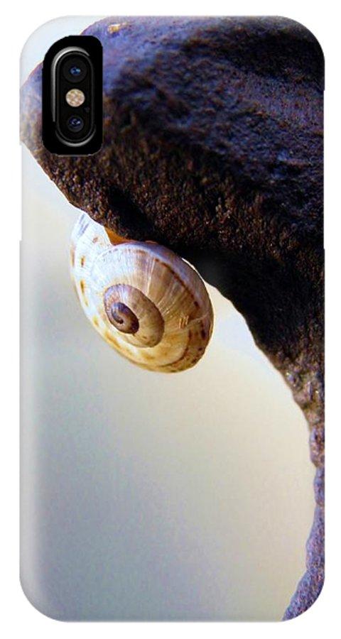Snail; Gastropod; Garden; Metal; Invertebrate; Iron; Nature; Macro; Beautiful; Brown; Beige; Summer; Warm; Spiral; Background; Decorative; IPhone X / XS Case featuring the photograph Snail On Iron by Werner Lehmann
