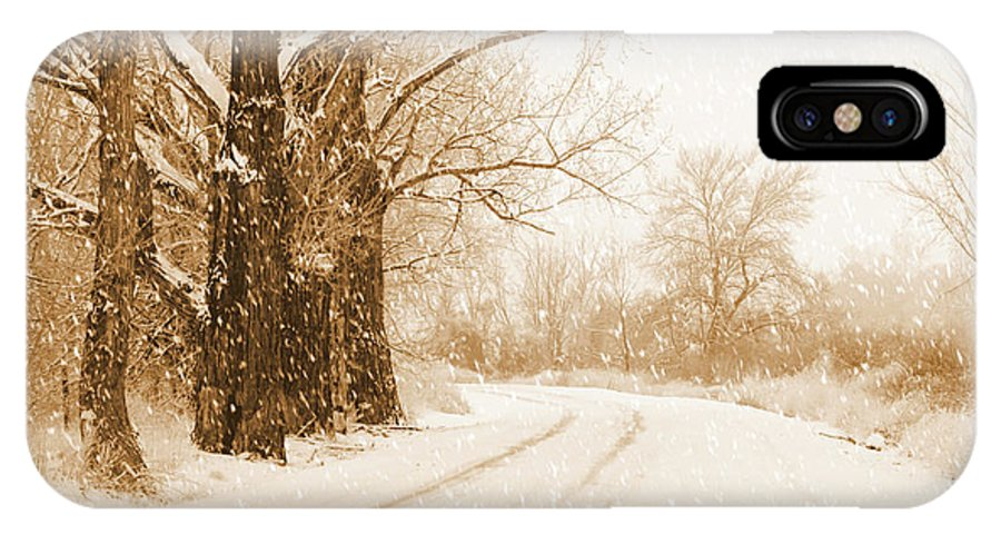 Christmas Card IPhone X Case featuring the photograph Soft Sepia Season's Greetings Card by Carol Groenen