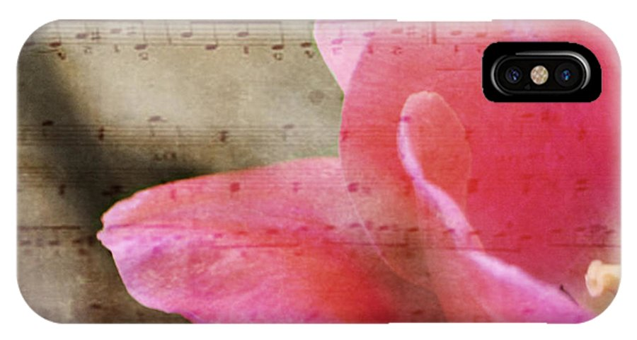 Music IPhone X Case featuring the photograph Spring Sings by Traci Cottingham