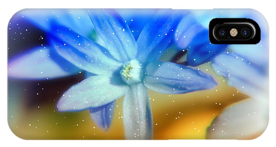 Blue IPhone X Case featuring the photograph Star Flower by Elaine Manley