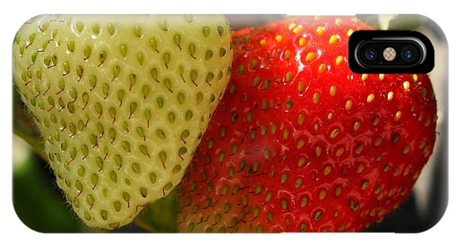 Strawberries IPhone X Case featuring the photograph Strawberries by Jim Sauchyn