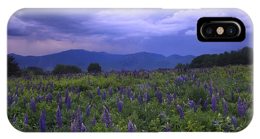 Thunderstorm IPhone X Case featuring the photograph Sugar Hill Lupines Thunderstorm Clearing by John Burk