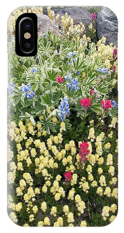 Summer IPhone X / XS Case featuring the photograph Summer Alpine Flowers by Bob Gibbons