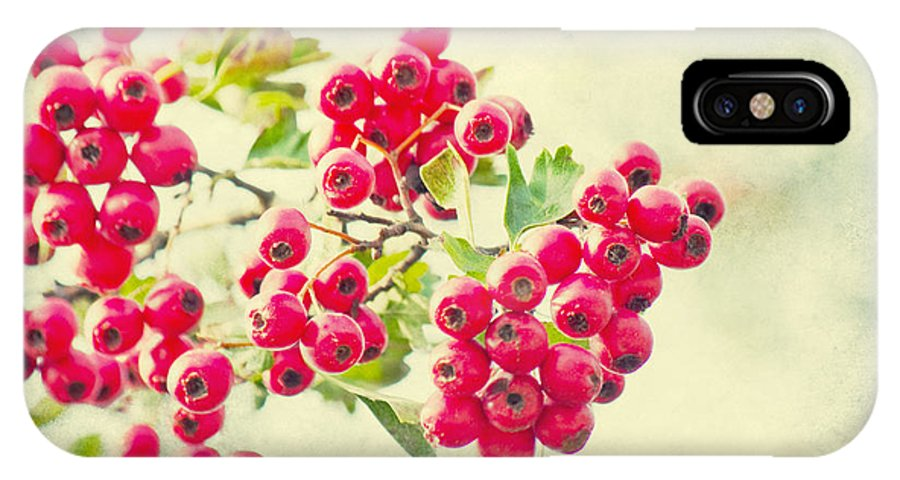 Vintage IPhone X Case featuring the photograph Summer Berries by Angela Doelling AD DESIGN Photo and PhotoArt