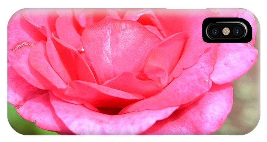 Summer IPhone X Case featuring the photograph Summer Pink Rose Floral by P S