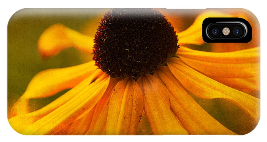 Black Eyed Susie IPhone X Case featuring the photograph Summers Bloom by Randy Wood