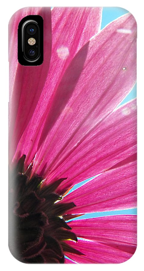 Flowers IPhone X Case featuring the photograph Sun Soaked by Corinne Elizabeth Cowherd
