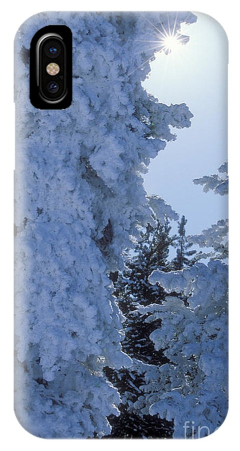 Yellowstone National Park IPhone X Case featuring the photograph Sunburst In Yellowstone by Sandra Bronstein
