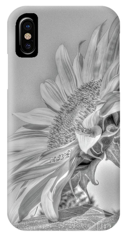 Beautiful Bc IPhone X Case featuring the photograph Sunflower by Rod Wiens