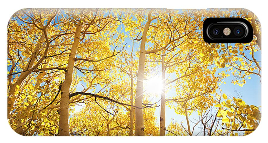 Aspen IPhone X Case featuring the photograph Sunlight Through Aspen Trees by MakenaStockMedia - Printscapes