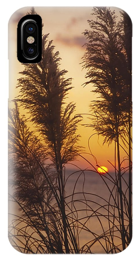 Evening IPhone X Case featuring the photograph Sunset On The Mediterranean Sea And Plant by Patrick Kessler