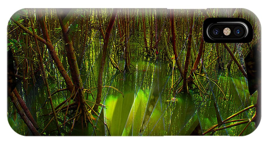Plants IPhone X Case featuring the photograph Swamp Jungle by Perry Van Munster