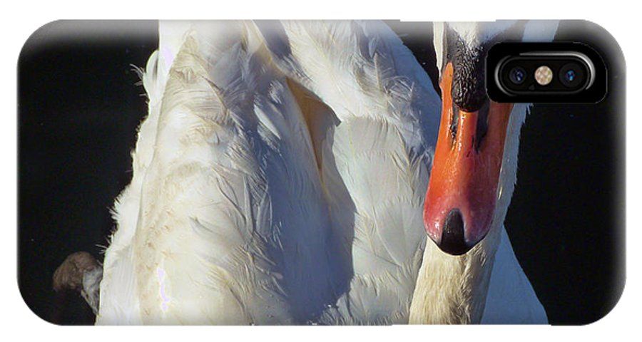 Swan IPhone X Case featuring the photograph Swan by Lynn Bolt