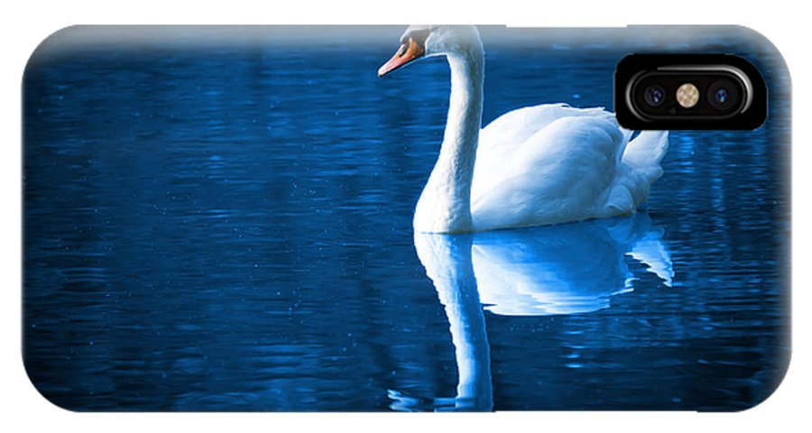 Beautiful IPhone X Case featuring the photograph Swan On Lake by Tilen Hrovatic