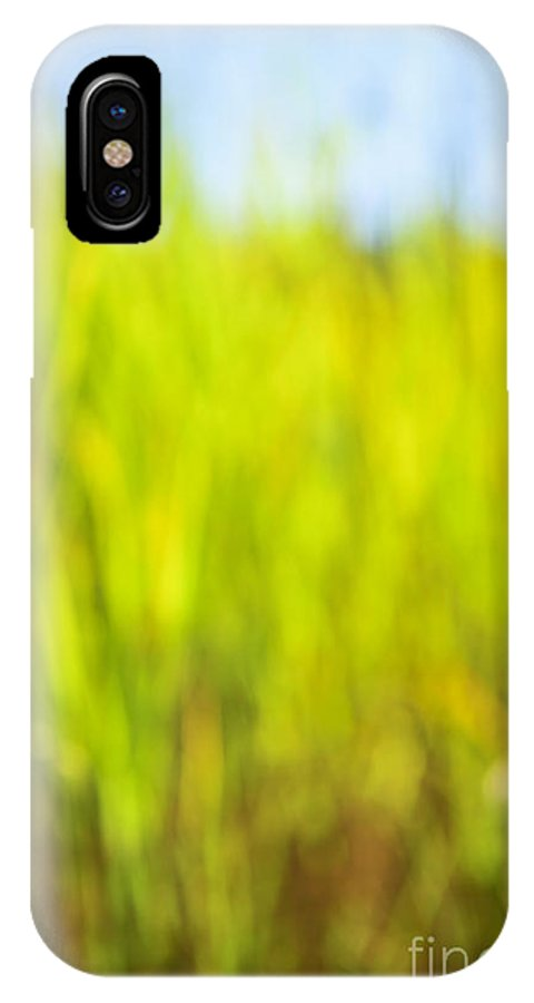 Grass IPhone X Case featuring the photograph Tall Grass by Elena Elisseeva