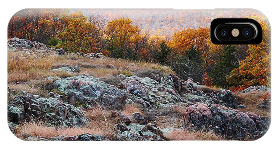 Landscape IPhone X Case featuring the photograph Taum Sauk Mountain Glade I by Greg Matchick