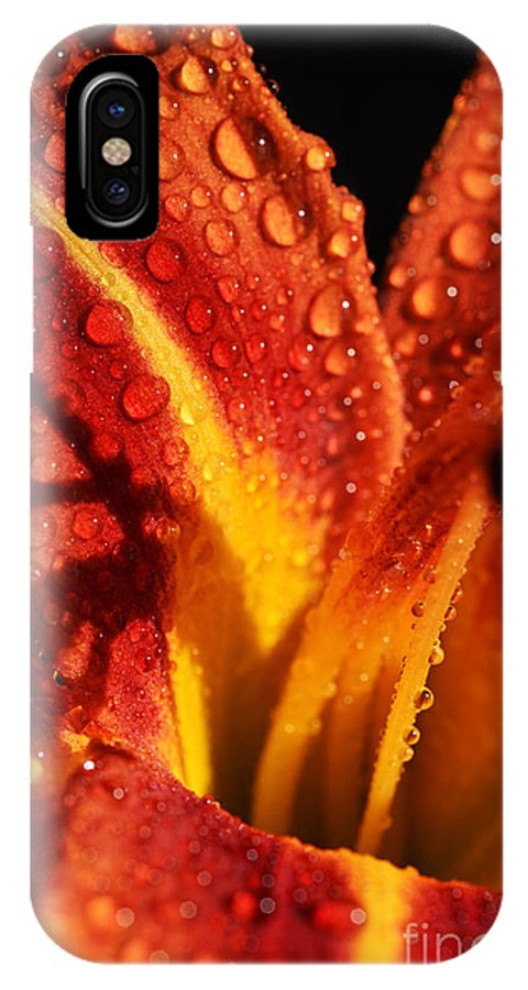 Orange IPhone X / XS Case featuring the photograph Tawny Daylily And Raindrops by Thomas R Fletcher
