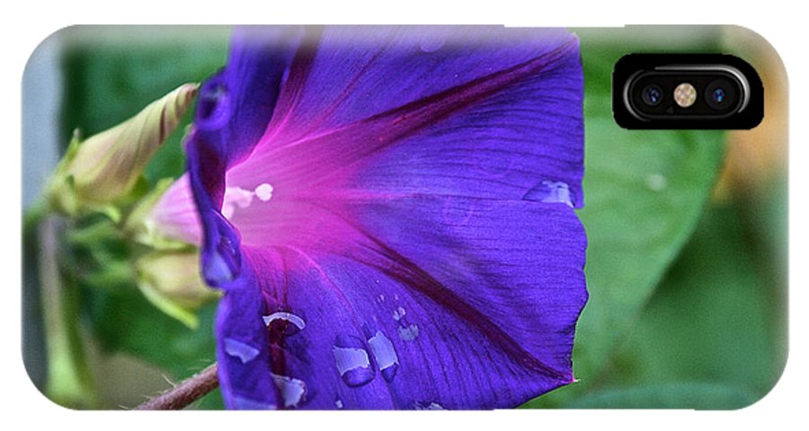 Outdoors IPhone X Case featuring the photograph Tearful by Susan Herber