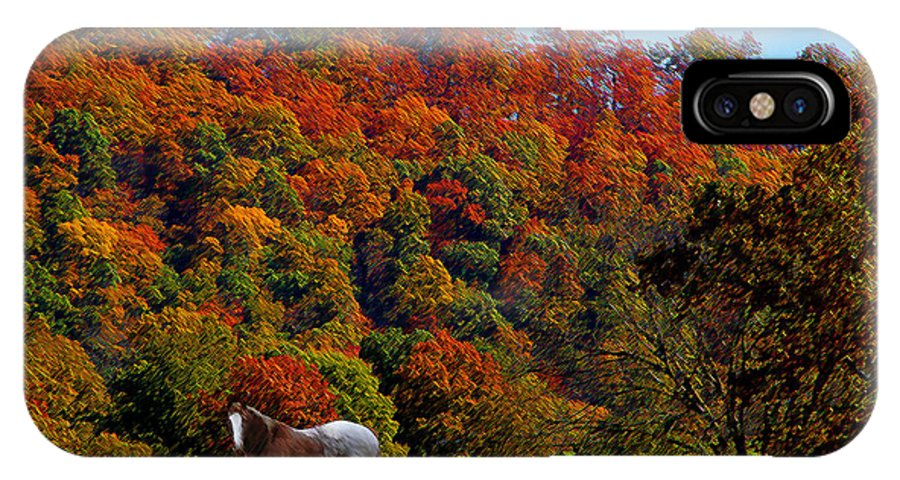 Tn IPhone X Case featuring the photograph Tennessee Fall by Ericamaxine Price