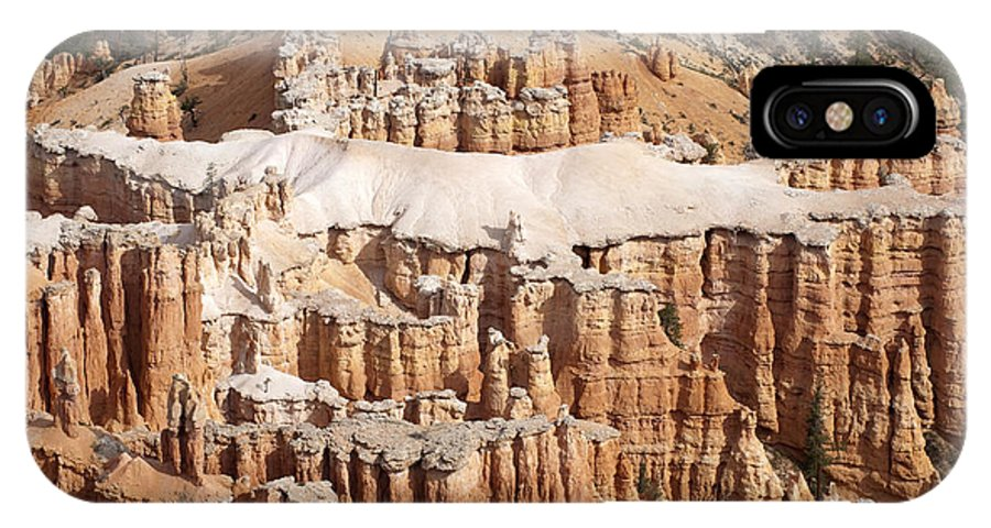 Landscape IPhone X Case featuring the photograph The Allligator by Sandra Bronstein