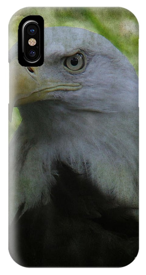 Lee Dos Santos IPhone X Case featuring the photograph The American Bald Eagle - Lee Dos Santos by Lee Dos Santos