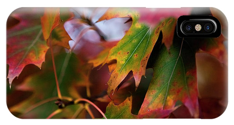 New York City IPhone X / XS Case featuring the photograph The Autumn Leaves by Lorraine Devon Wilke
