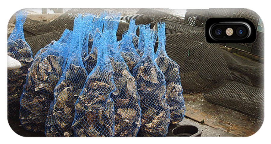 Drakes Bay Oyster Farm IPhone X Case featuring the photograph The Bags Of Blessings From The Ocean by Hiroko Sakai
