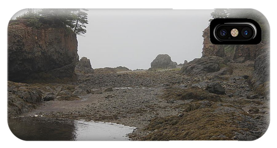 Fundy IPhone X Case featuring the photograph The Bay Of Fundy by Diane Greco-Lesser