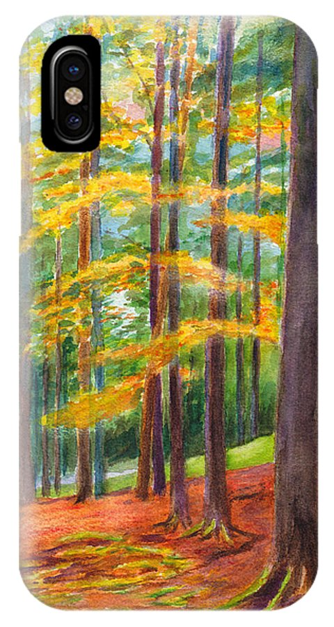 Forest IPhone X Case featuring the painting The Black Forest At Hinterzarten by Dai Wynn