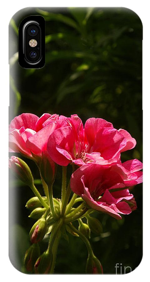 Plant IPhone X Case featuring the photograph The Bloom by Jack Norton