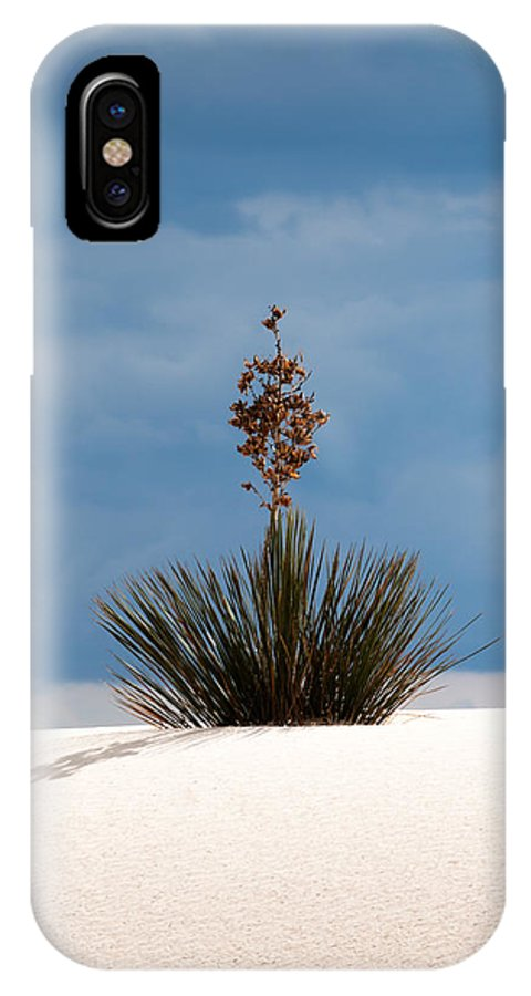 Cloud IPhone X Case featuring the photograph The Crown by Jason Smith