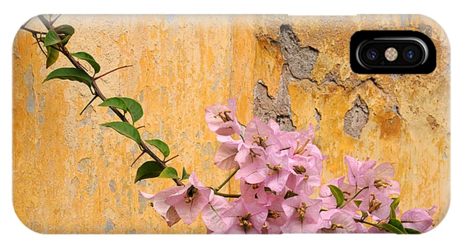 Bougainvillea IPhone X Case featuring the photograph The Escaping Bougainvillea by Vivian Christopher