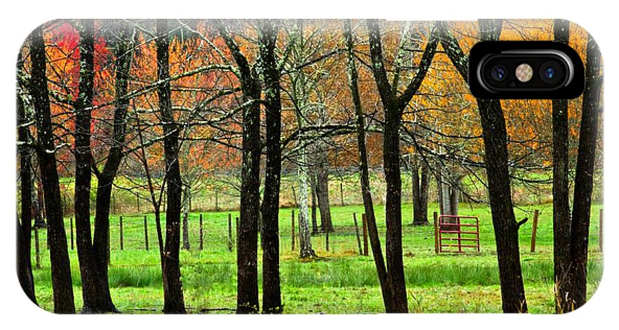 Appalachia IPhone X Case featuring the photograph The Grove by Debra and Dave Vanderlaan