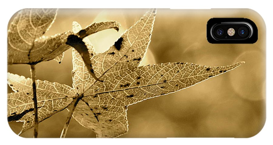 Sepia IPhone X Case featuring the photograph The Gum Leaf by JD Grimes