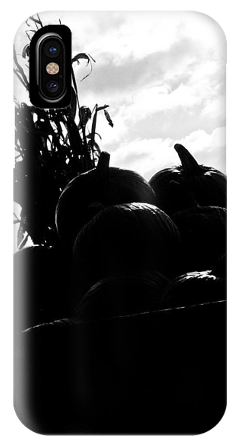 Pumpkins IPhone X Case featuring the photograph The Harvest by Jessica Brawley