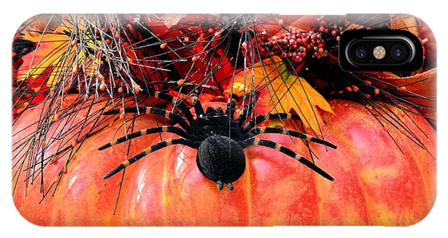 The Harvest Spider IPhone X Case featuring the photograph The Harvest Spider by Maria Urso