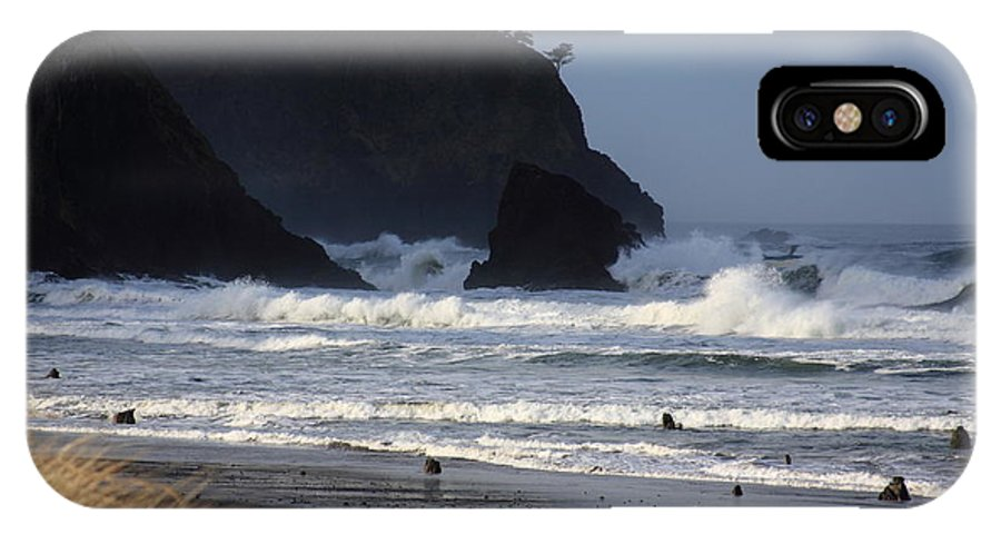 Oregon Coast IPhone X Case featuring the photograph The Lost Forest by John McManus