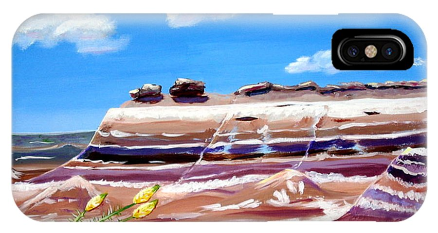 Petrified Wood IPhone X Case featuring the painting The Painted Desert And The Petrified Foreste by Phyllis Kaltenbach
