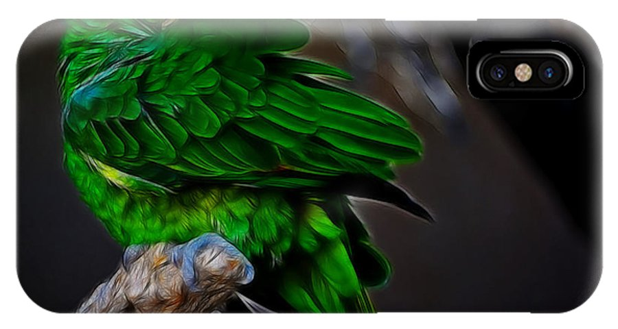 Fine Art Photography IPhone X Case featuring the photograph The Parrot Fractal by Donna Greene