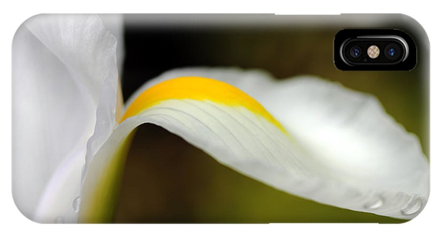 Dutch Iris IPhone X Case featuring the photograph The Pose White Dutch Iris Flower by Jennie Marie Schell