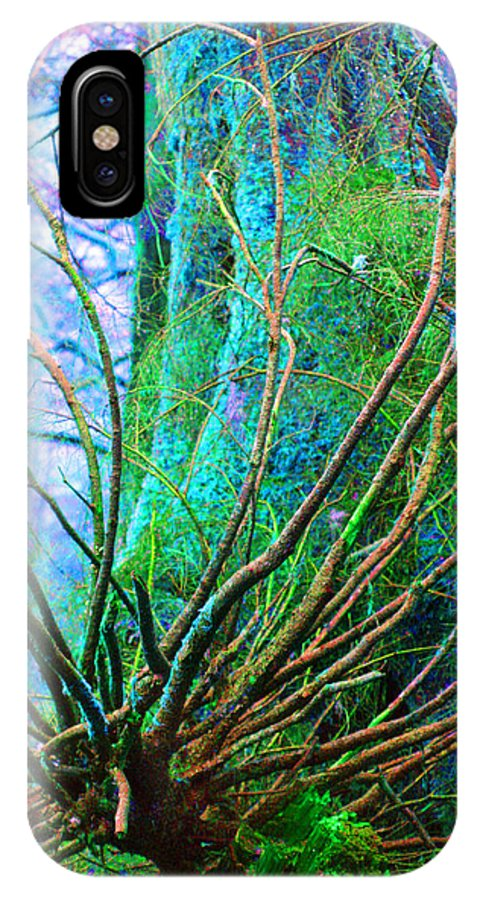 Trees IPhone X Case featuring the photograph The Reach by Marie Jamieson