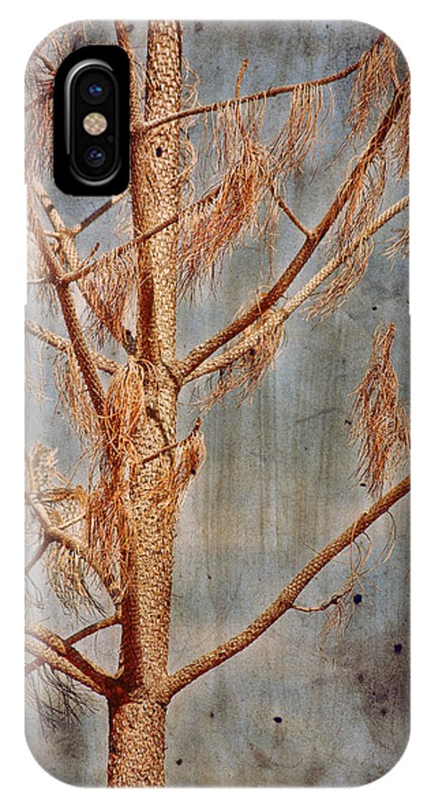Dead Pine IPhone X Case featuring the photograph The Reminder by Bonnie Bruno