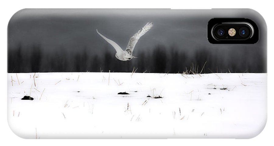 Snowy Owl IPhone X Case featuring the photograph The Search by The Artist Project