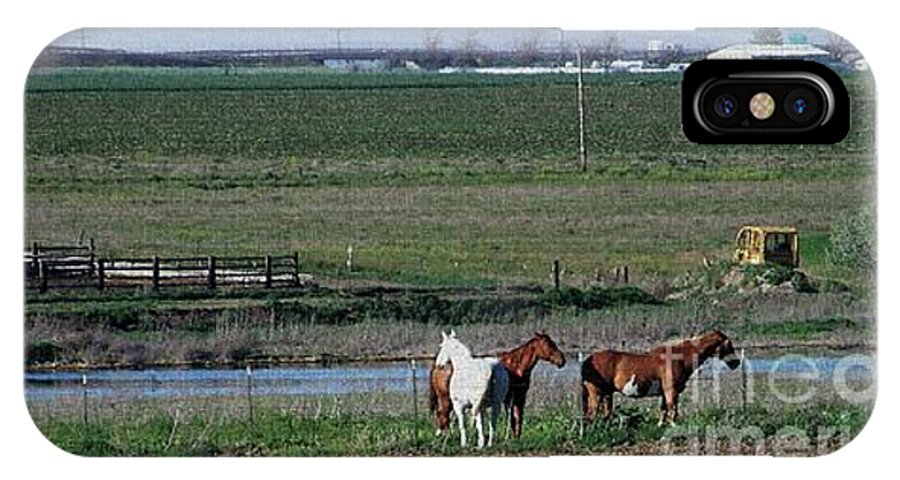 Horses IPhone X Case featuring the photograph Three Horses by Charles Robinson