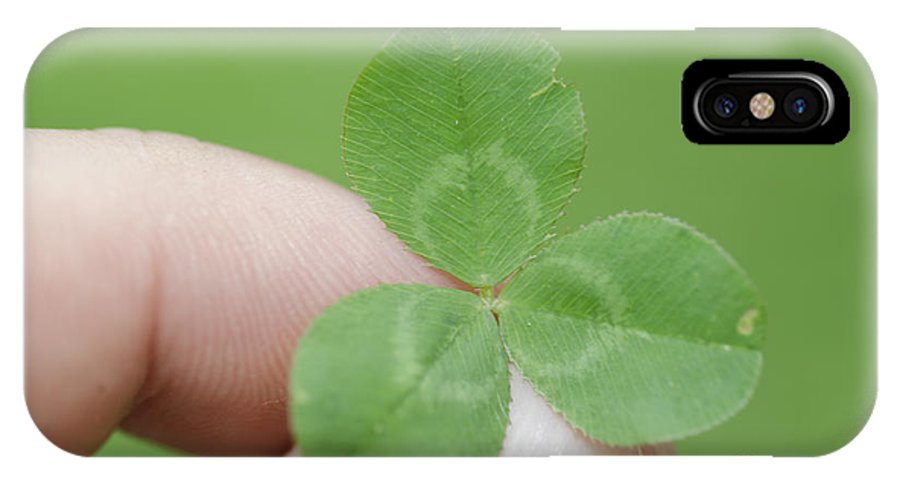 Three Leaf Clover IPhone X Case featuring the photograph Three Leaf Clover In A Hand by Mats Silvan
