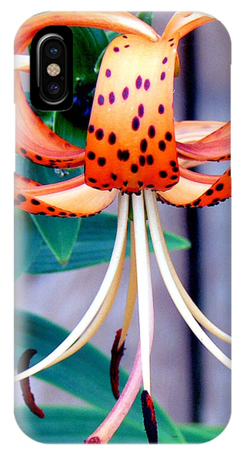 Flower IPhone X Case featuring the photograph Tiger Lily by Ericamaxine Price