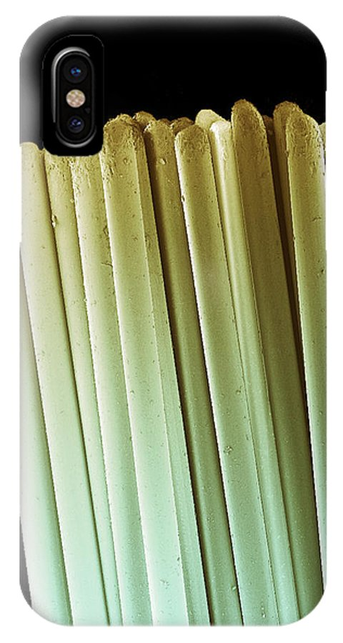 Toothbrush IPhone X Case featuring the photograph Toothbrush Bristles, Sem by Steve Gschmeissner