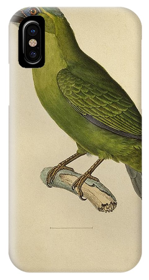 Bird; Profile; Beak; Plumage; Feather; Feathers; Ornithological; Exotic; Ornithology; Illustration; Plate; South America; American; Green; Animal IPhone X Case featuring the painting Toucan by Paul Louis Oudart